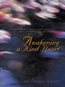 Awakening A Kind Heart