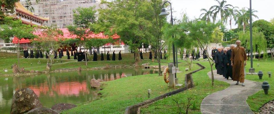 Garden & Koi Pond