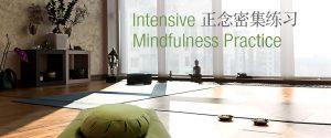 Intensive Mindfulness Practice 正念密集练习