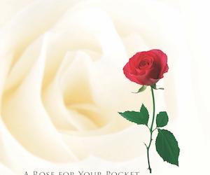 Rose for your Pocket 为你别上一朵红玫瑰