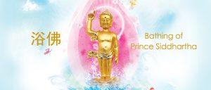 Virtual Bathing of Prince Siddhartha (Online) 线上浴佛