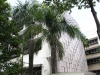 Bright Hill Evergreen Home