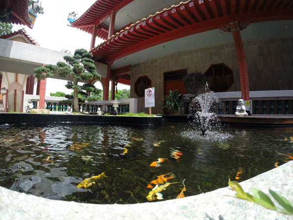 Koi Ponds Consecration Ceremony